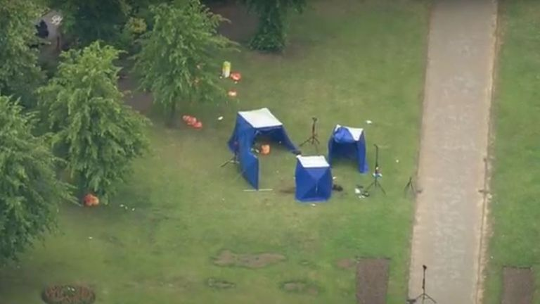 A man ran into Forbury gardens and attacked people