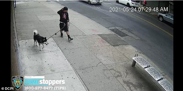 The NYPD has released a surveillance video showing the suspect in the morning minutes before the first attempt to lure was made.
