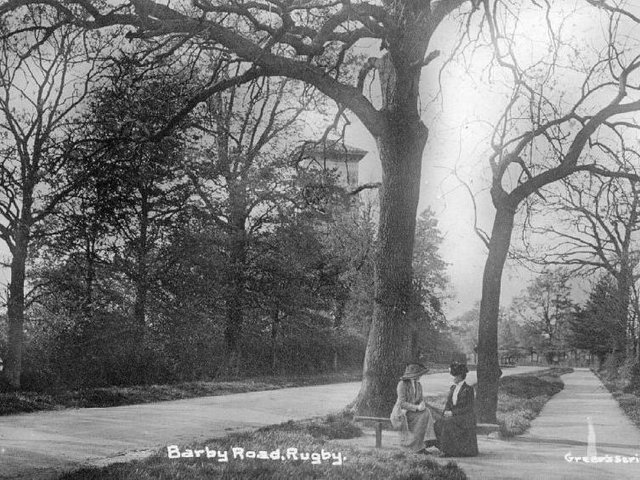 Barby Road, Rugby... in the days when the majestic elm was king.