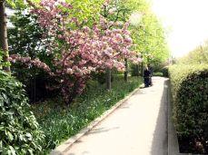 Promenade Plantée..