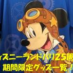 ディズニーランドパリ25周年~イベントグッズ発売~
