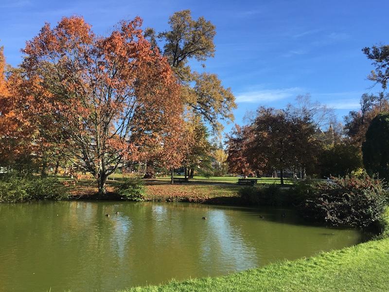 visiter-Pau-201711-parc-beaumont-etang