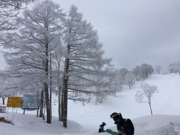 piste de ski nozawa onsen