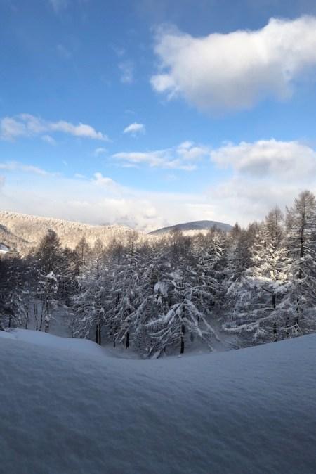 Ski Madarao Snowboard