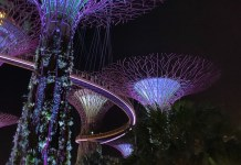 Garden by the bay la nuit