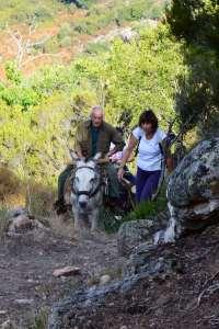 Balade à dos d'âne