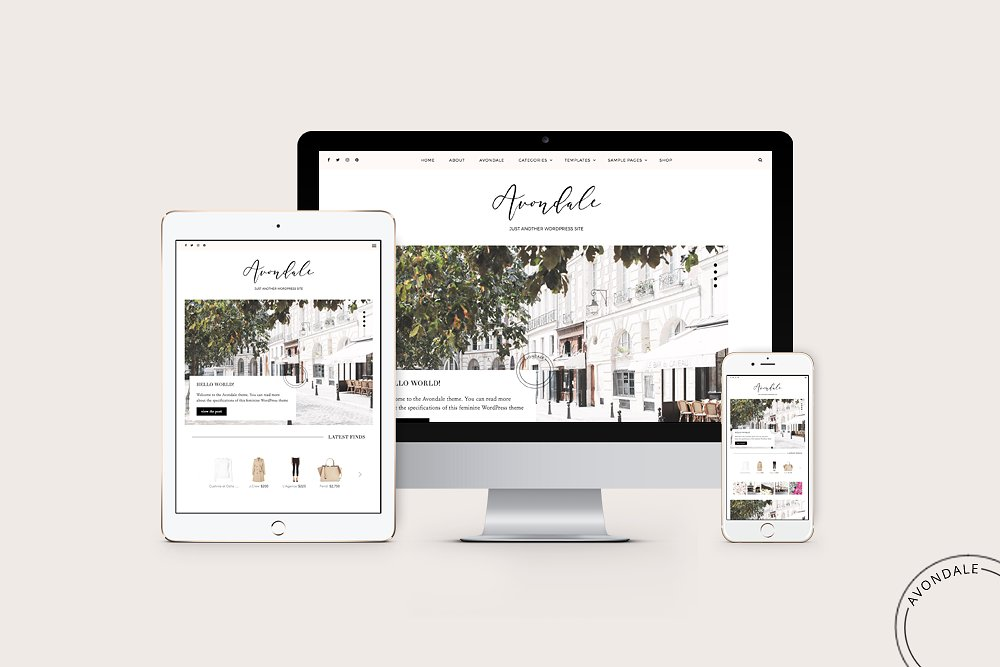 How to start a blog lifestyle finance travel fashion food blogger fitness health beauty beginners easy tutorial Best Theme For Blogs Creative Marketplace Themes Paris Chic Style 1