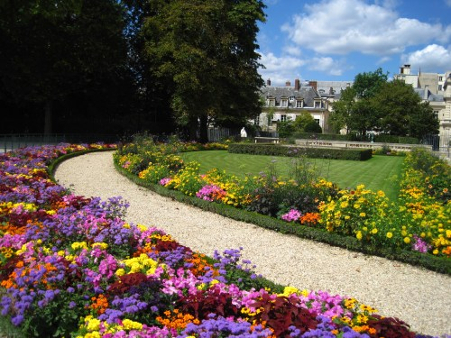 jardin du Luxembourg fleuri