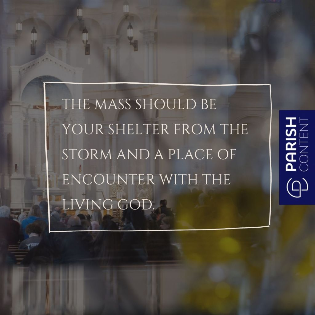 The Mass Should Be Your Shelter