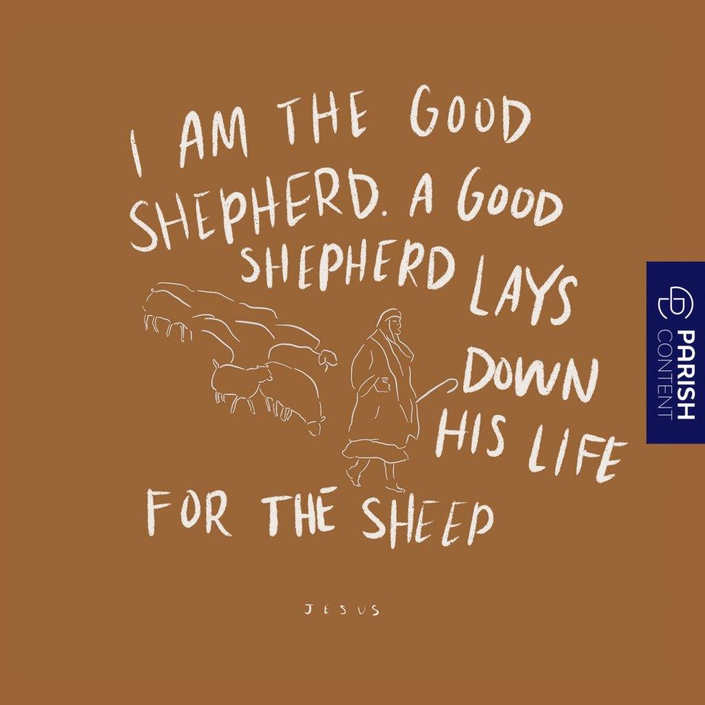 A Good Shepherd