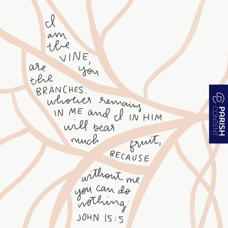 Socialpost John 15 5