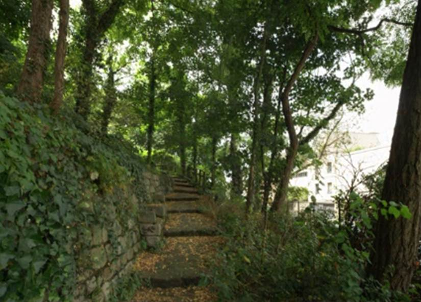 Jardin Sauvage Saint Vincent