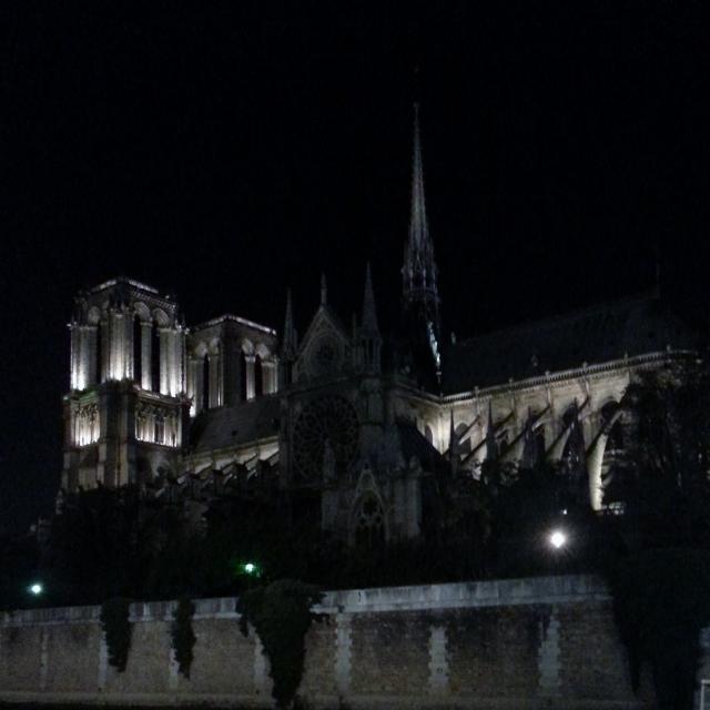 Notre-Dame de Paris by night