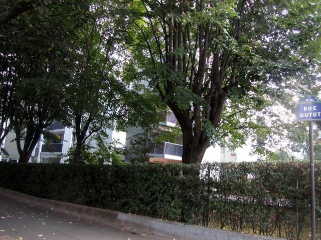 Premier appartement familial
