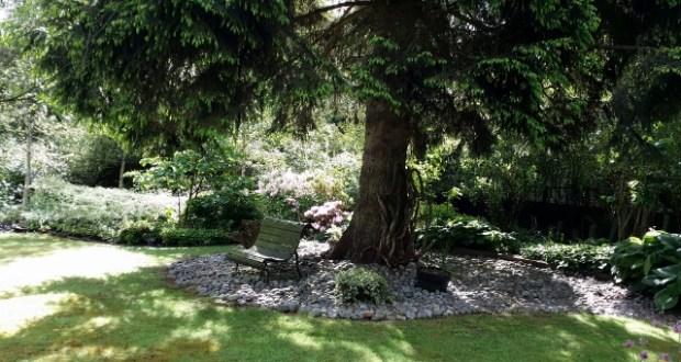 Le Jardin de la Grenouillère aux Essarts-le-Roi