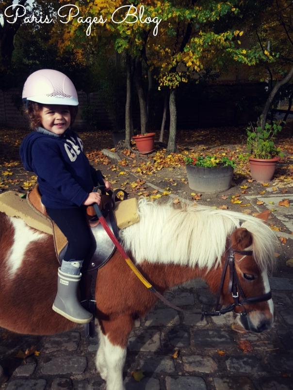 baby-poney-2