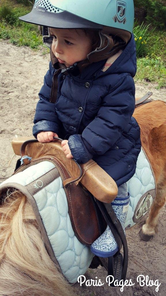 la-chevelue-poney-1