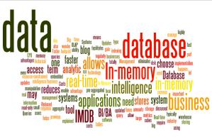 In-Memory Data