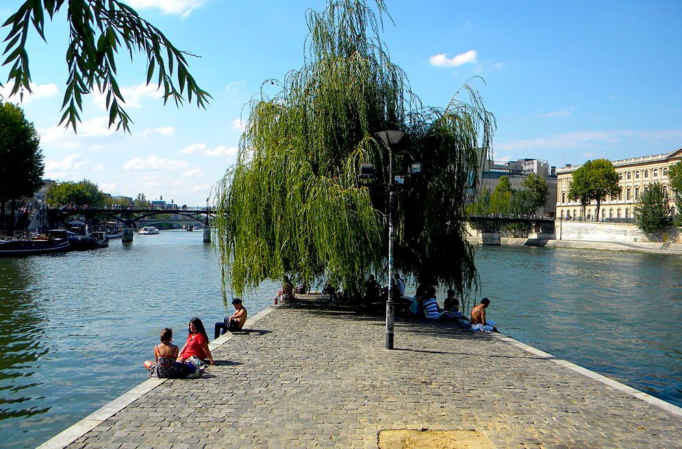 The Place du Vert Galant on the Ile de la Cite is a favorite spot on the Seine River for picnics.