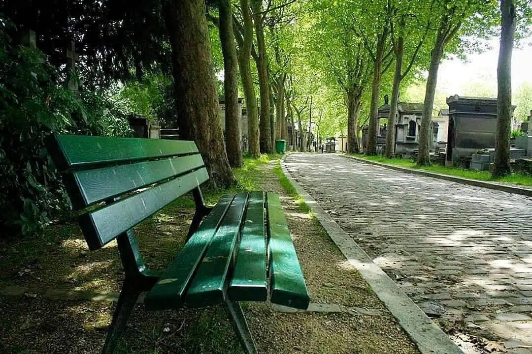 pere lachaise bench summer