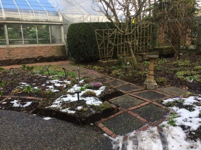 March 19 - path to coldframe