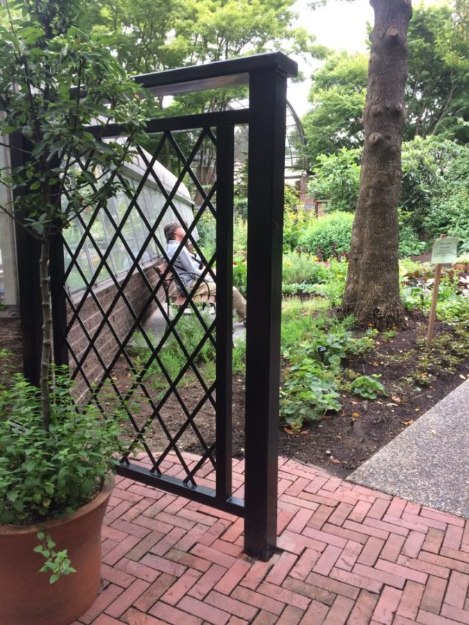 The new Lattice Fence installed by the greenhouse