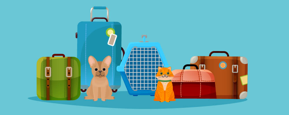 Dog and cat with cages for their package