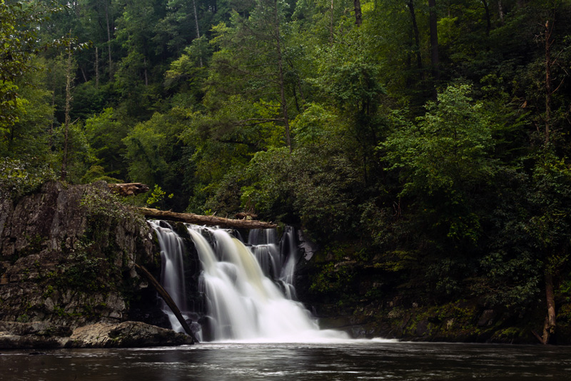 abrams creek waterfall in the great smoky mountains