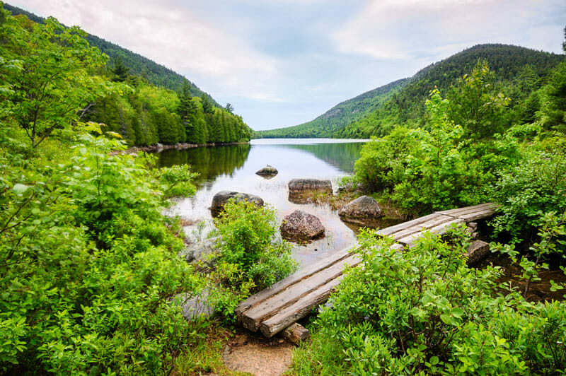 acadia national park in the spring
