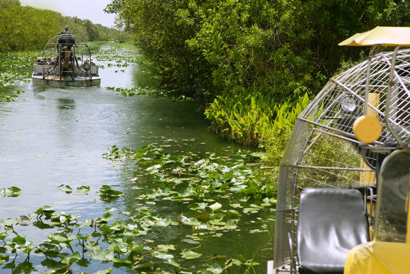 Airboat In The Big Cypress National Park In Florida