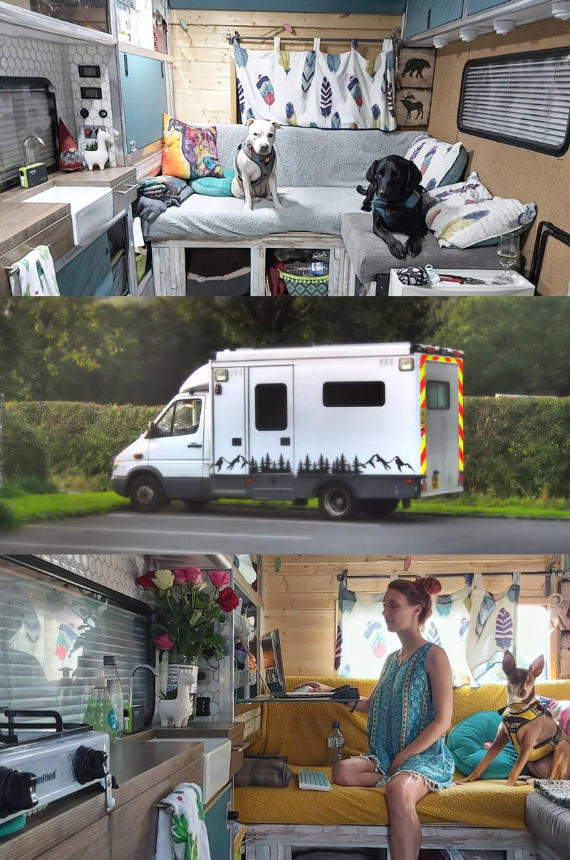 camper ambulance conversion for a couple and their dogs