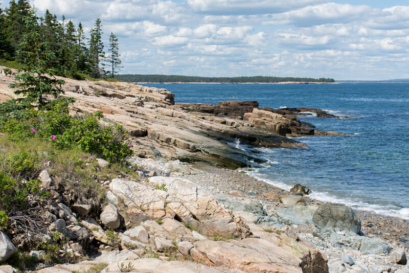 Camping Near Schoodic Woods Point In Acadia National Park