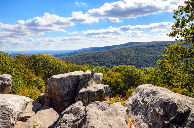 Catoctin Mountain National Park In Maryland