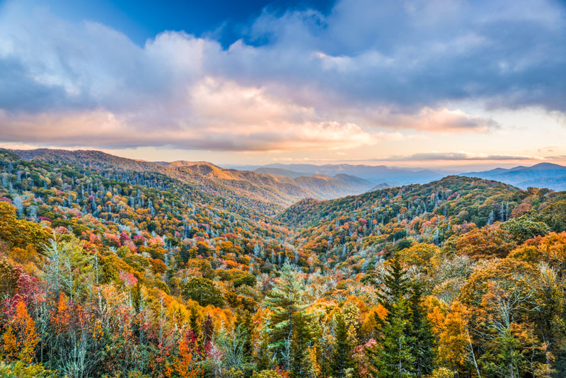 driving to a camping site in the great smoky mountains national park
