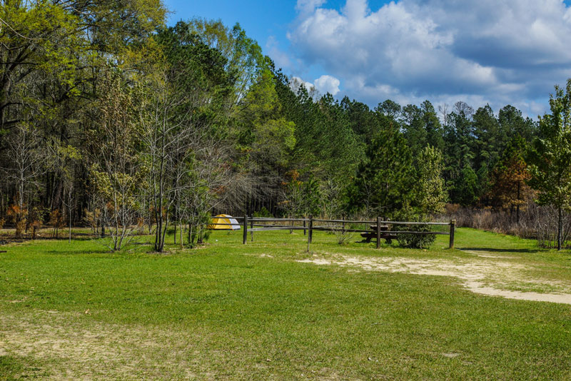 long leaf campground in congaree national park south carolina