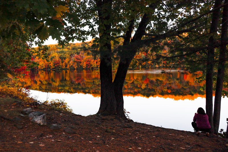 Fall Foliage In A Connecticut National Park Lake