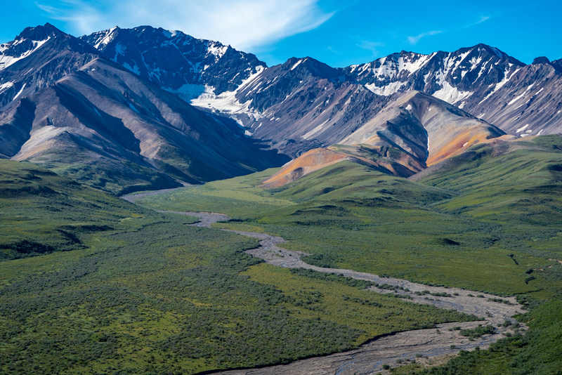 View from Polychrome Pass in denali national park alaska