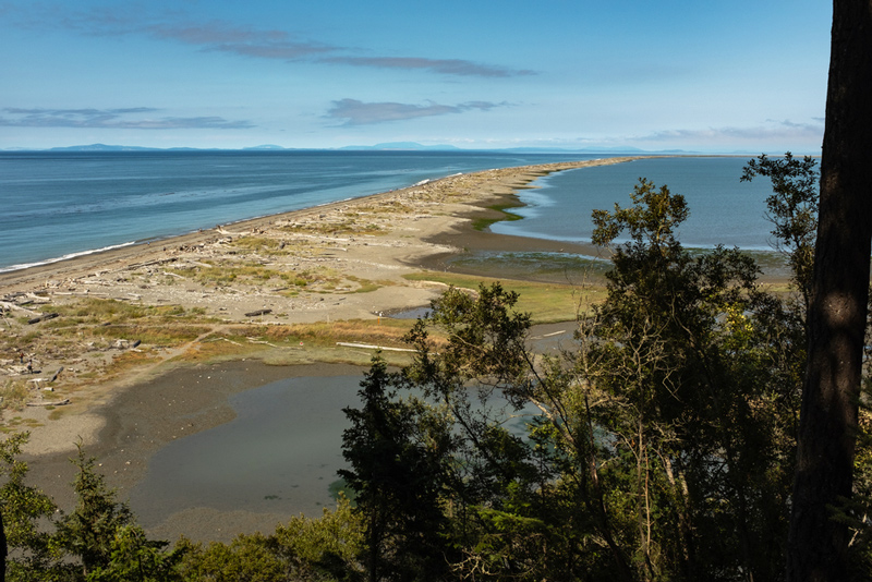 camping on the dungeness spit shore