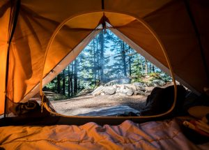 Finding Free Primitive Campgrounds