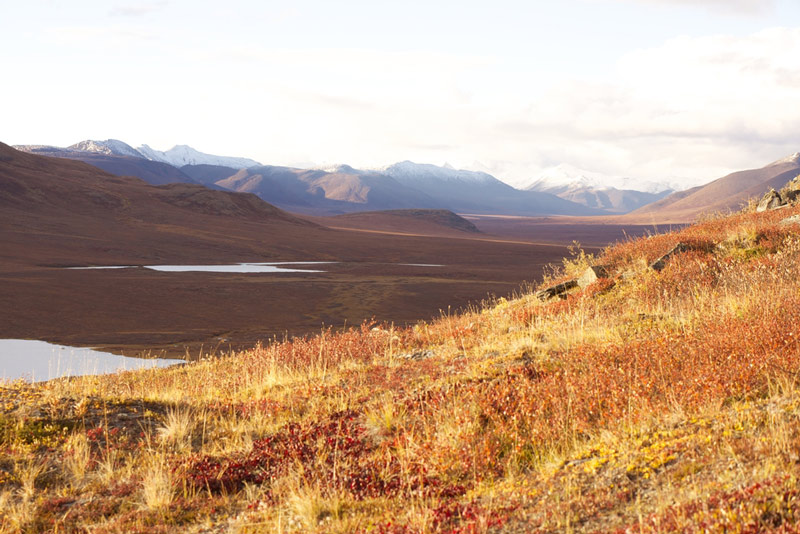 gates of the arctic national park in alaska