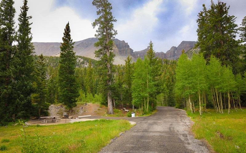 wheeler peak campground in great basin national park nevada