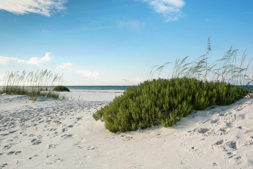 gulf islands national seashore in florida