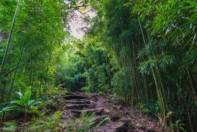 Pīpīwai Trail in haleakala national park hawaii