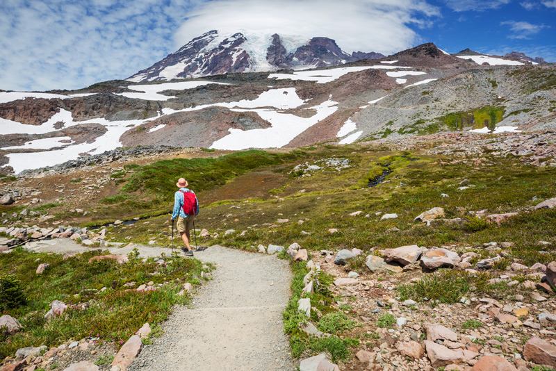 hiking trail in mount rainier national park washington state