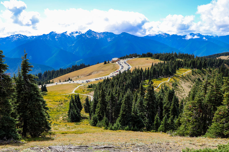 parking lot in the hurricane ridge mountains at olympic national park