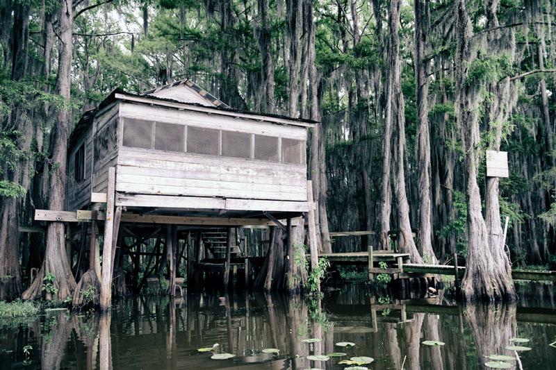 louisiana national park swamp