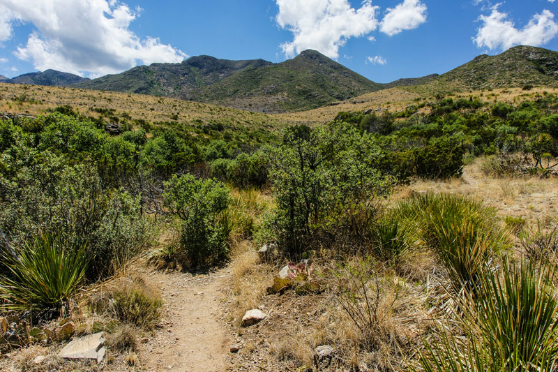 backpacking the McKittrick trail in the guadalupe mountains national park