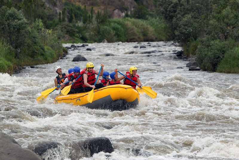 whitewater rafting on the flathead river in glacier national park montana