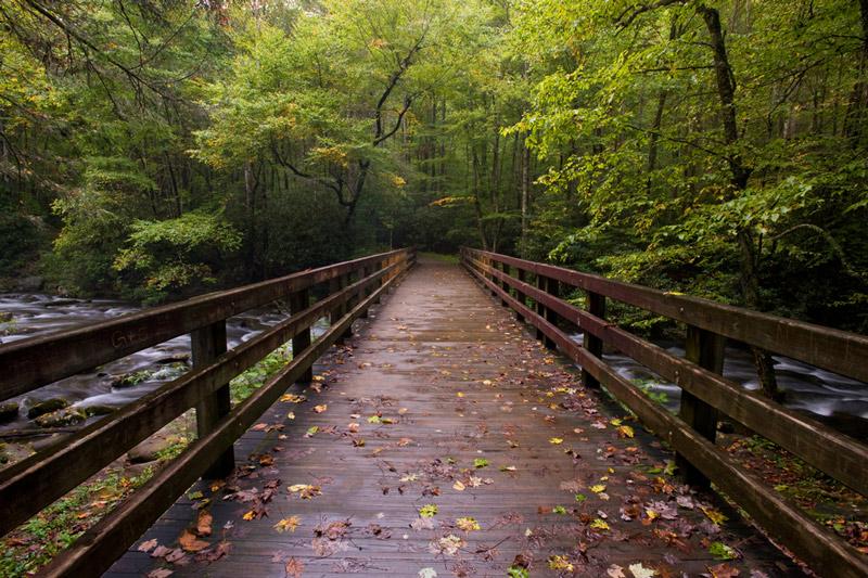 hiking across a bridge in great smoky mountains national park north carolina