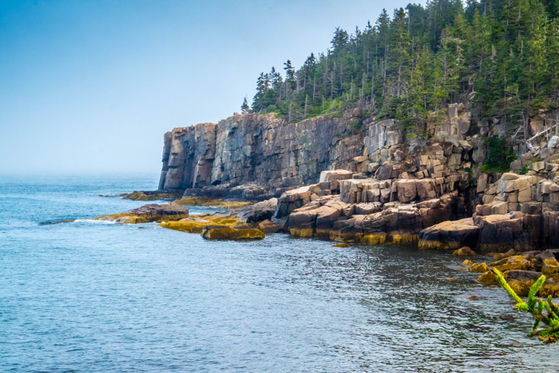otter cliff in acadia national park maine